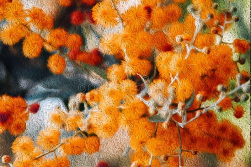 Oranje onscherpe de Mimosa pluizige bloem van de illustratie grafische aard royalty-vrije stock foto's