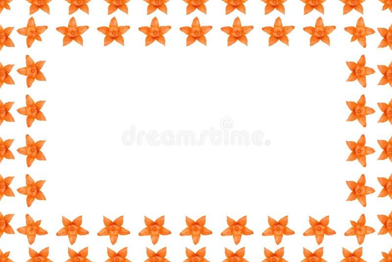 Oranje physalisachtergrond, kader en grens, exemplaar ruimtefoto royalty-vrije illustratie
