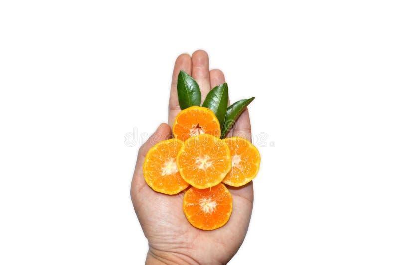 Oranje plakken op hand op witte achtergrond stock foto