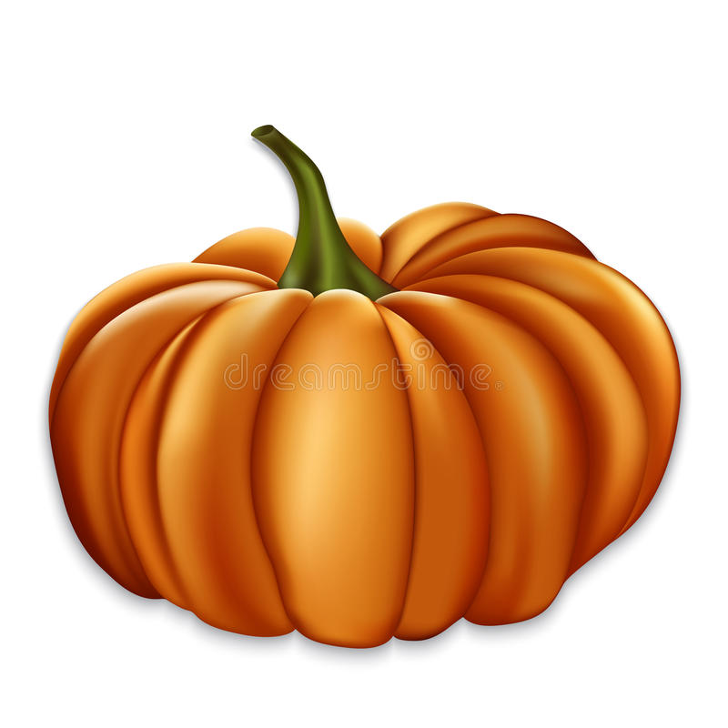 Oranje pompoen. stock illustratie