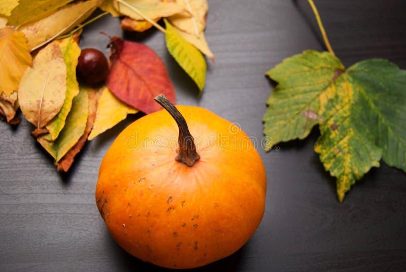 Oranje Pompoen stock foto