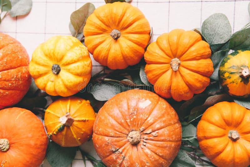 Oranje pompoenen op witte lijst in koffie royalty-vrije stock afbeeldingen