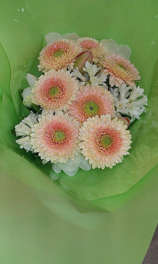 Oranje/Roze bloemenboeket stock afbeeldingen