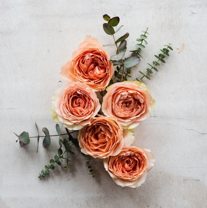 Oranje rozen en decoratieve takken op witte geweven backgroun stock foto