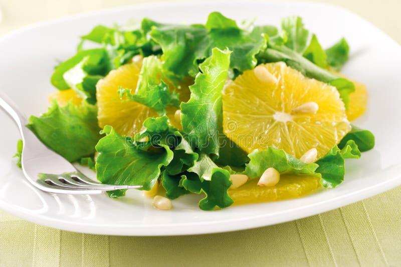 Oranje Salade royalty-vrije stock afbeeldingen
