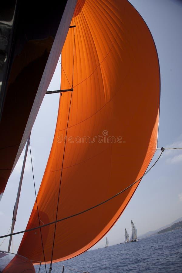 Oranje spinnaker in de wind stock afbeeldingen