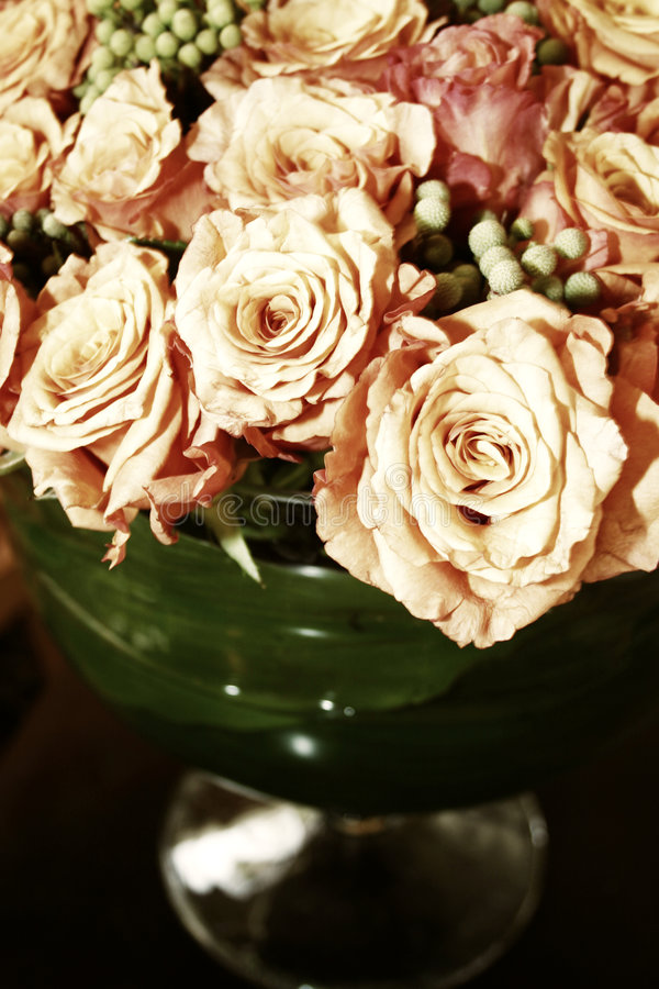 Oranje Thaise rozen 012 royalty-vrije stock foto