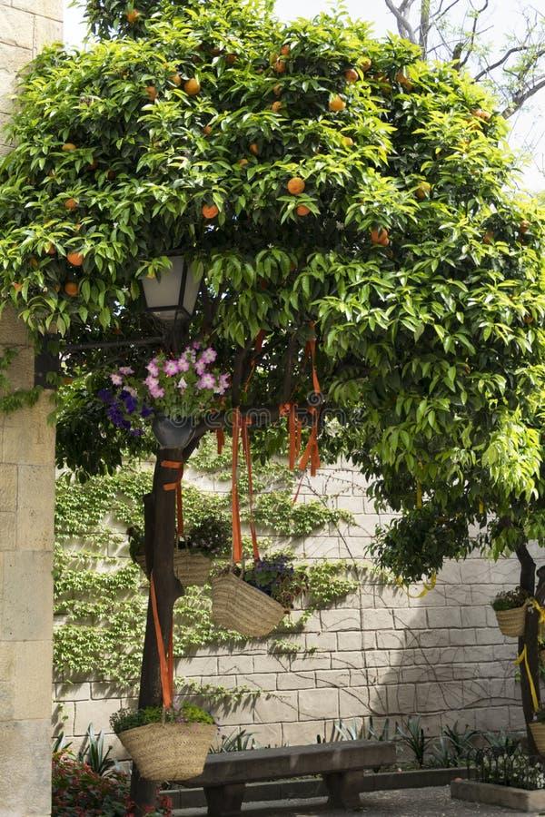 Oranje verfraaide bomen royalty-vrije stock afbeelding