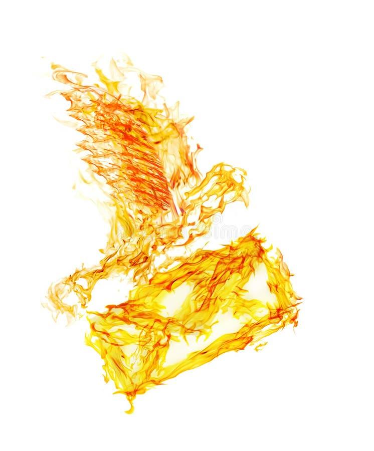 Oranje vlam vliegende duif met envelop op wit vector illustratie