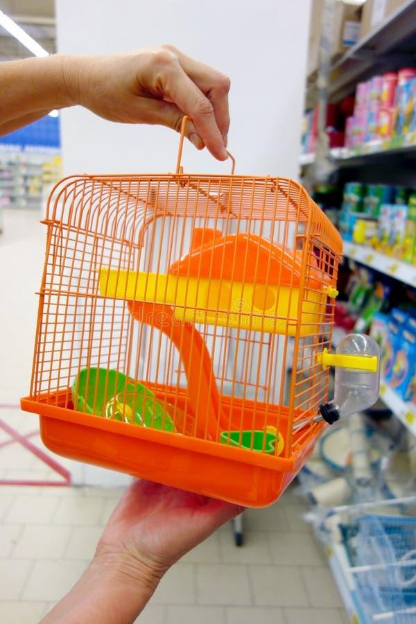 Oranje vogelkooi stock foto's