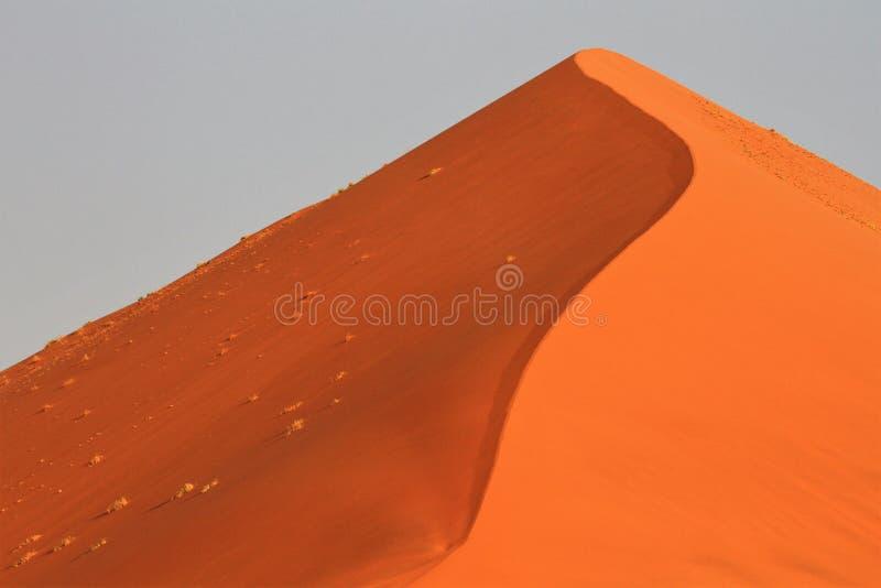 Oranje Zandduinen in de woestijn van Namib royalty-vrije stock foto's