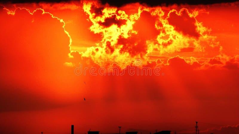 Oranje Zonsondergang royalty-vrije stock afbeeldingen