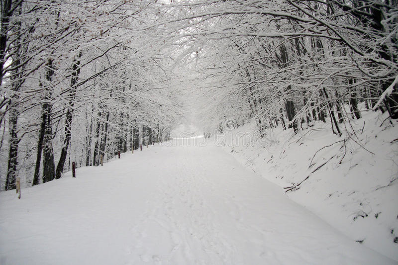 Orario invernale immagine stock libera da diritti