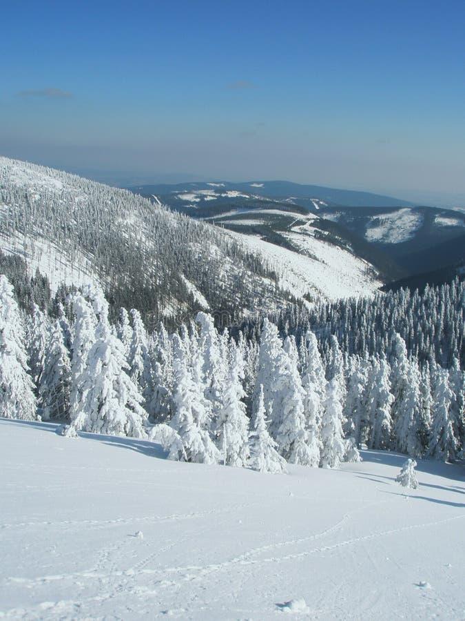 Orario invernale nelle montagne ceche immagine stock