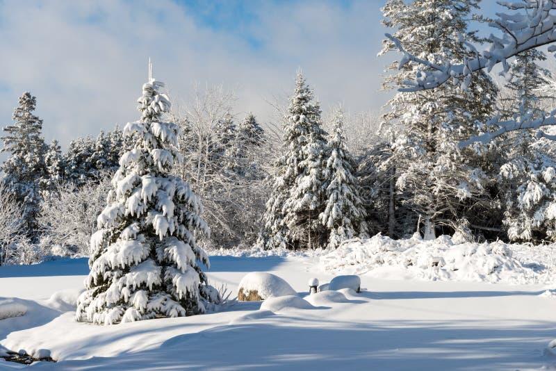 Orario invernale in Nova Scotia immagini stock libere da diritti