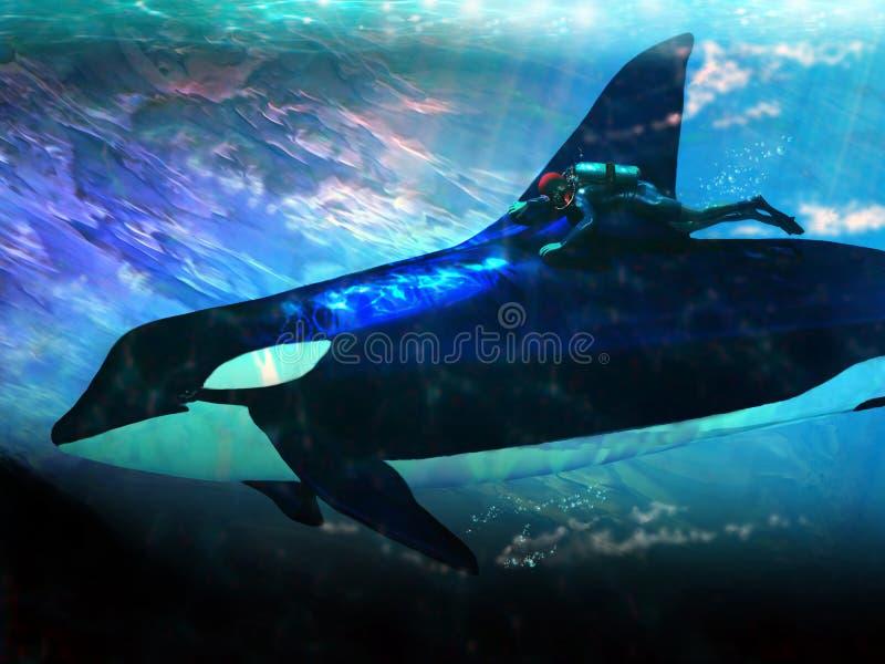 Orca e mergulhador ilustração royalty free