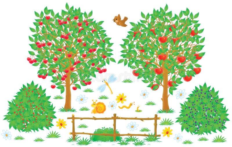 Orchard vector illustration