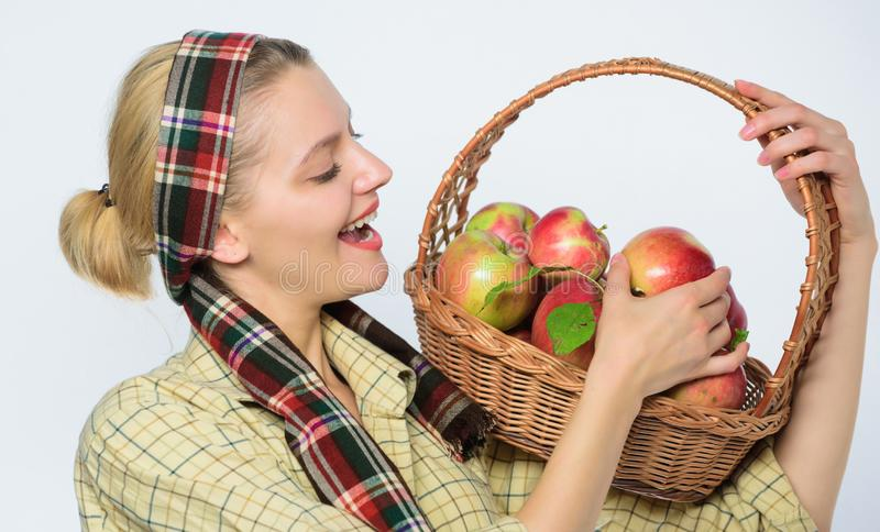 Orchard, gardener girl with apple basket. farming concept. healthy teeth. vitamin and dieting food. Happy woman eating. Apple. fall harvest. Autumn seasonal royalty free stock photography