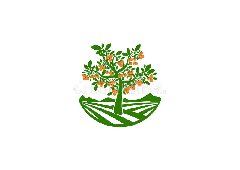 Orchard logo, fruits garden symbol , tree icon, persimmon concept design stock illustration