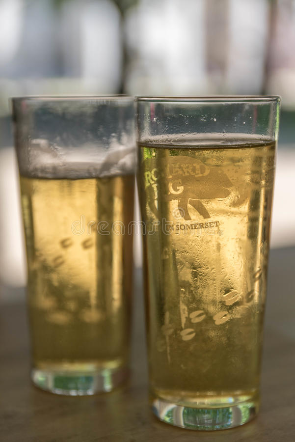 Orchard Pig Cider pint glass royalty free stock images