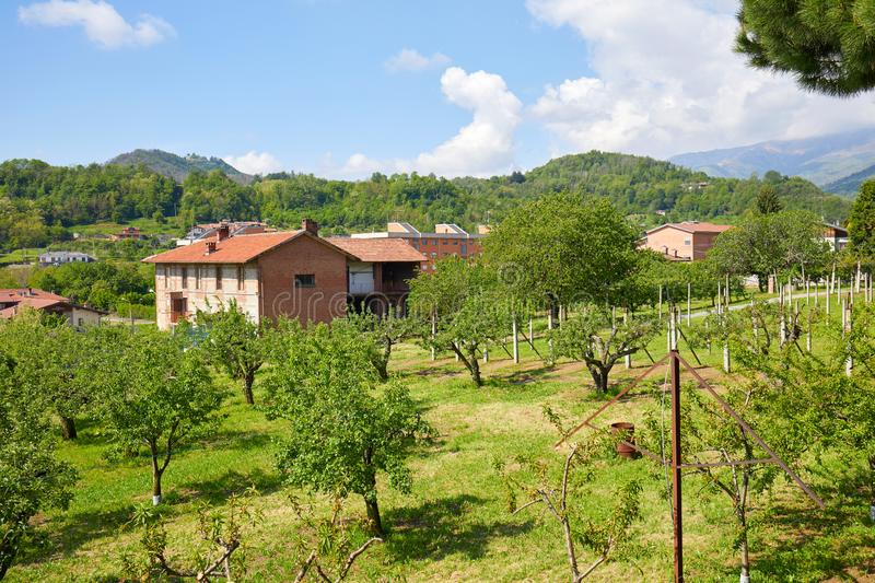 Orchard and red bricks rural house in a summer day, Italy stock images