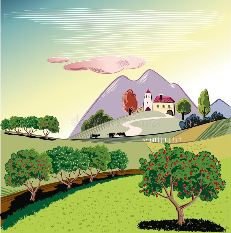 Orchard with rows of apple trees at dawn. Apple trees in an orchard, With an agricultural landscape in the background stock illustration