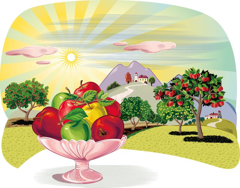 Orchard with rows of apple trees and fruit bowl hit apple. Orchard with rows of apple trees and fruit bowl stock illustration