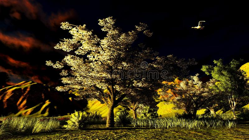 Orchard in spring time royalty free illustration