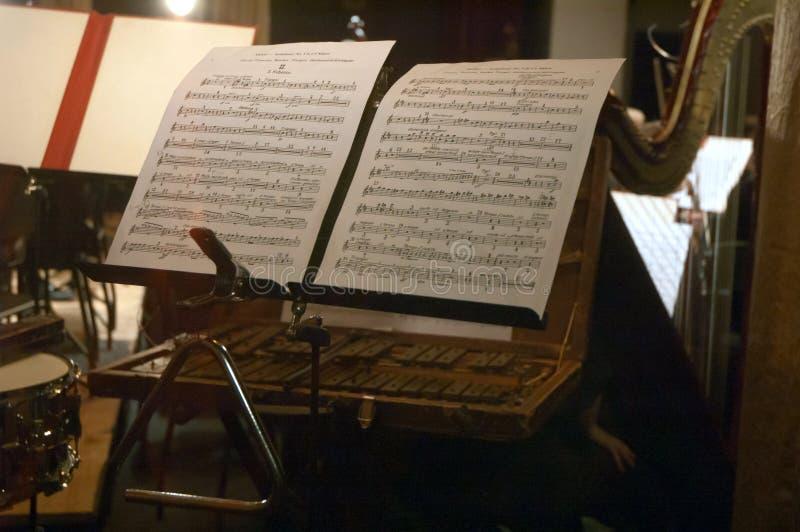 Orchestre symphonique photo libre de droits