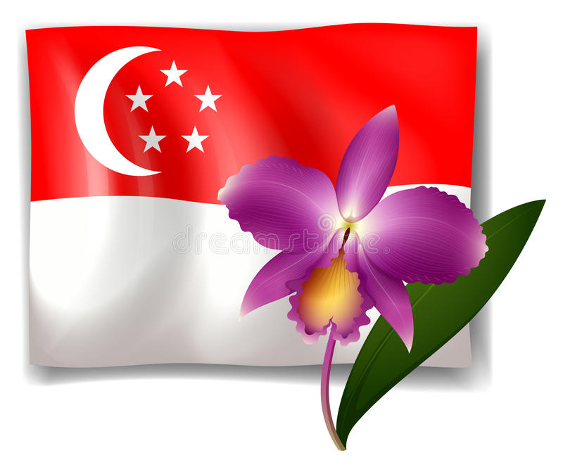 Orchidée et drapeau pourpres de Singapour illustration libre de droits