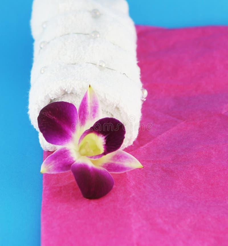 Orchidée et essuie-main blanc photographie stock libre de droits