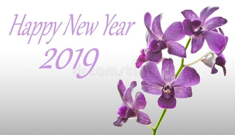 Orchidée pourpre et bonne année 2019 d'isolement sur le blanc photographie stock