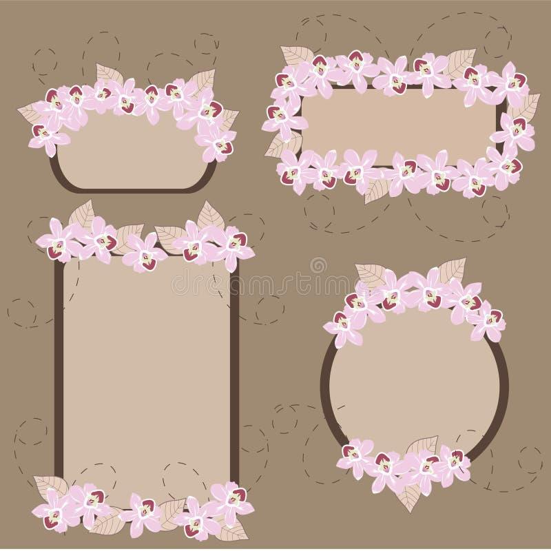 Orchidées dans les drapeaux illustration stock
