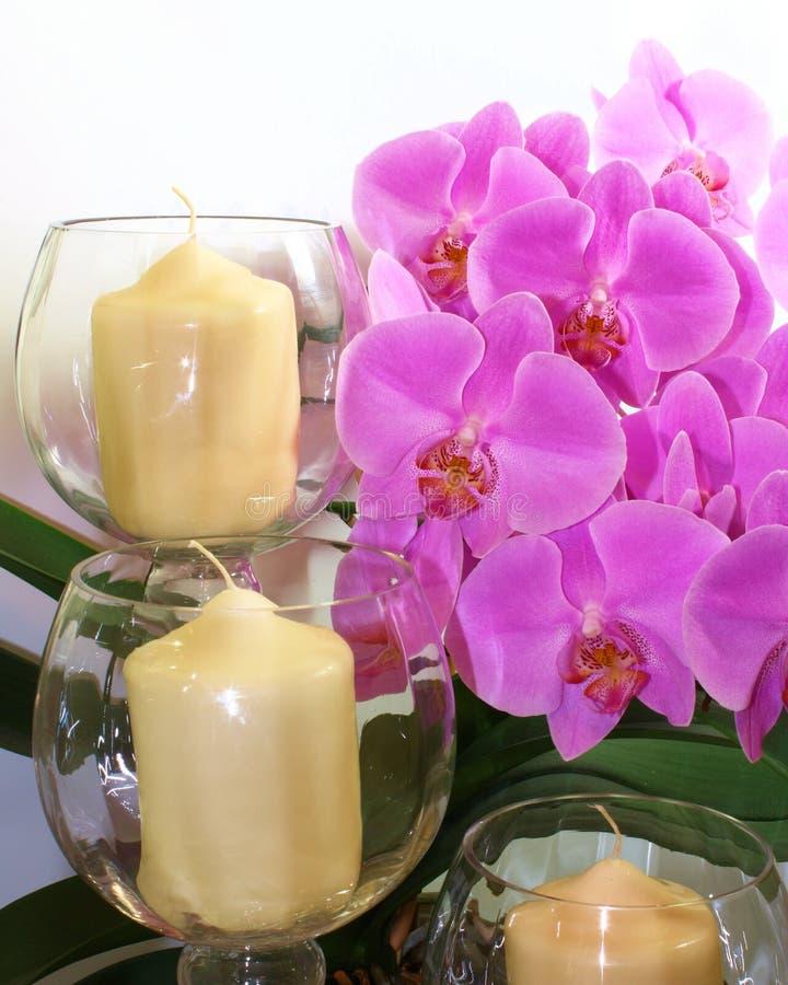 Orchidées et bougies image stock