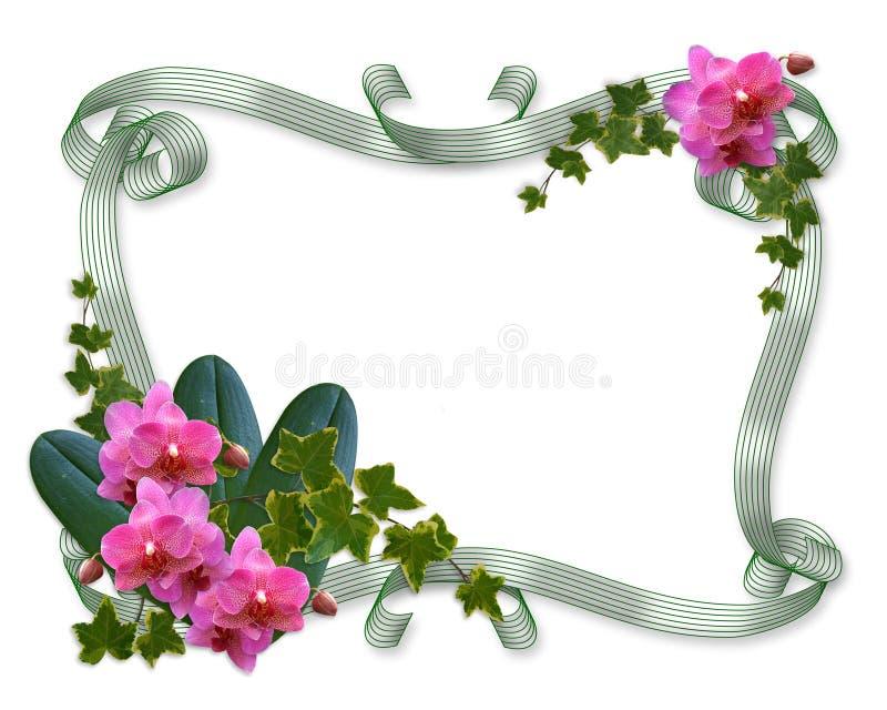 Orchidées et cadre d'invitation de mariage de lierre illustration stock