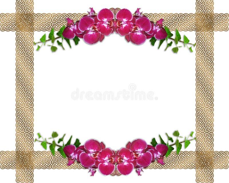 Orchidées et cadre roses de lierre illustration libre de droits
