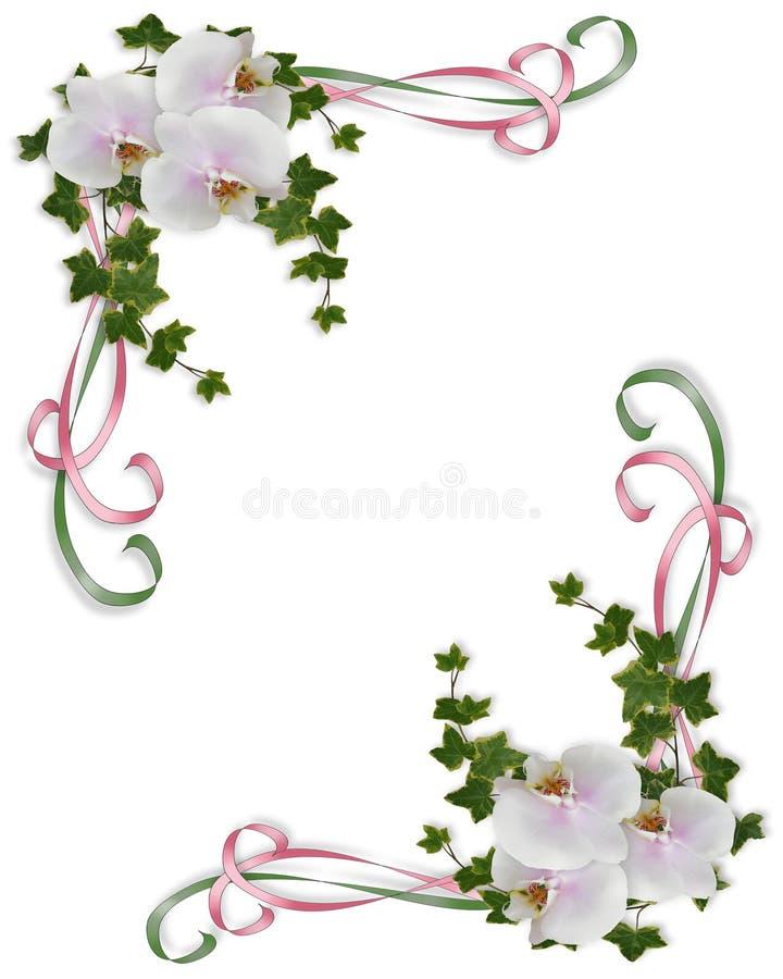 Orchidées et conception de coin de lierre illustration de vecteur