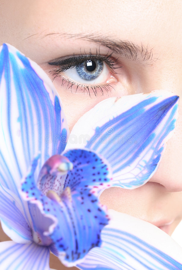 orchid ματιών ANG στοκ φωτογραφίες με δικαίωμα ελεύθερης χρήσης