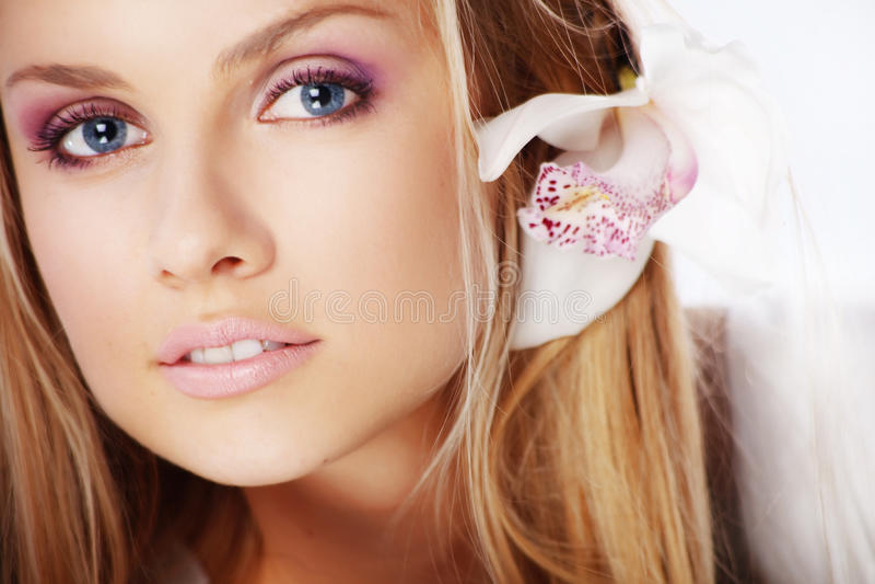 orchid ομορφιάς στοκ εικόνα με δικαίωμα ελεύθερης χρήσης