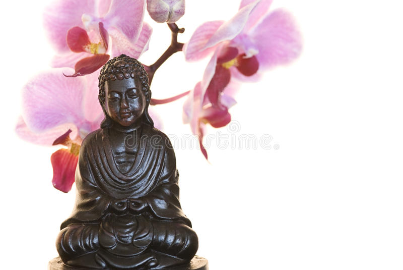 orchid του Βούδα στοκ φωτογραφία με δικαίωμα ελεύθερης χρήσης