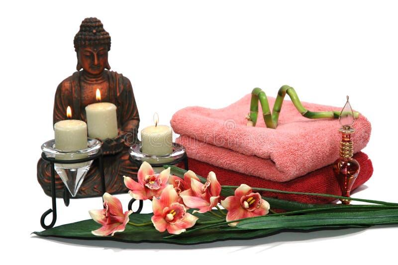 Download Orchid του Βούδα στοκ εικόνα. εικόνα από διακόσμηση, λουλούδι - 1528595