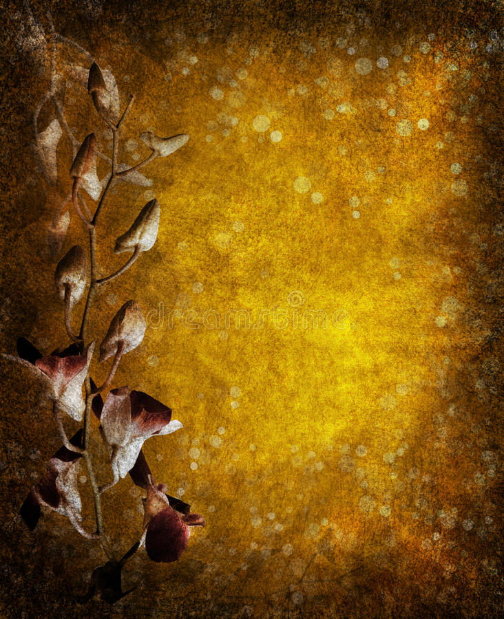 Orchid. A vintage rendition of an orchid bud on a highly textured golden surface. Image works well horizontal as well as vertical royalty free stock photo