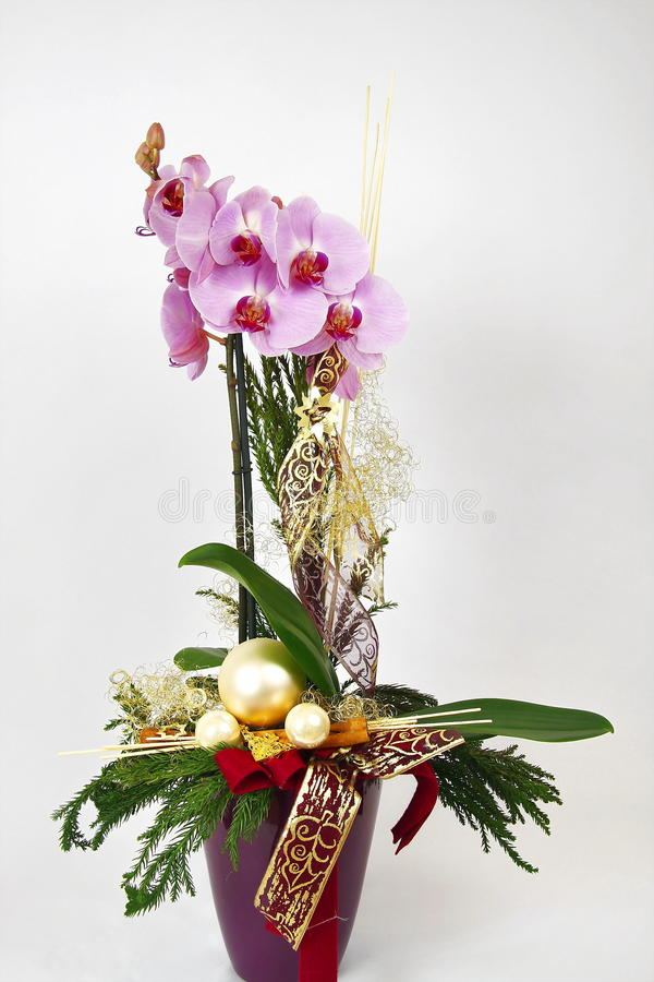 Orchid. Decorated with beads and ribbons royalty free stock image