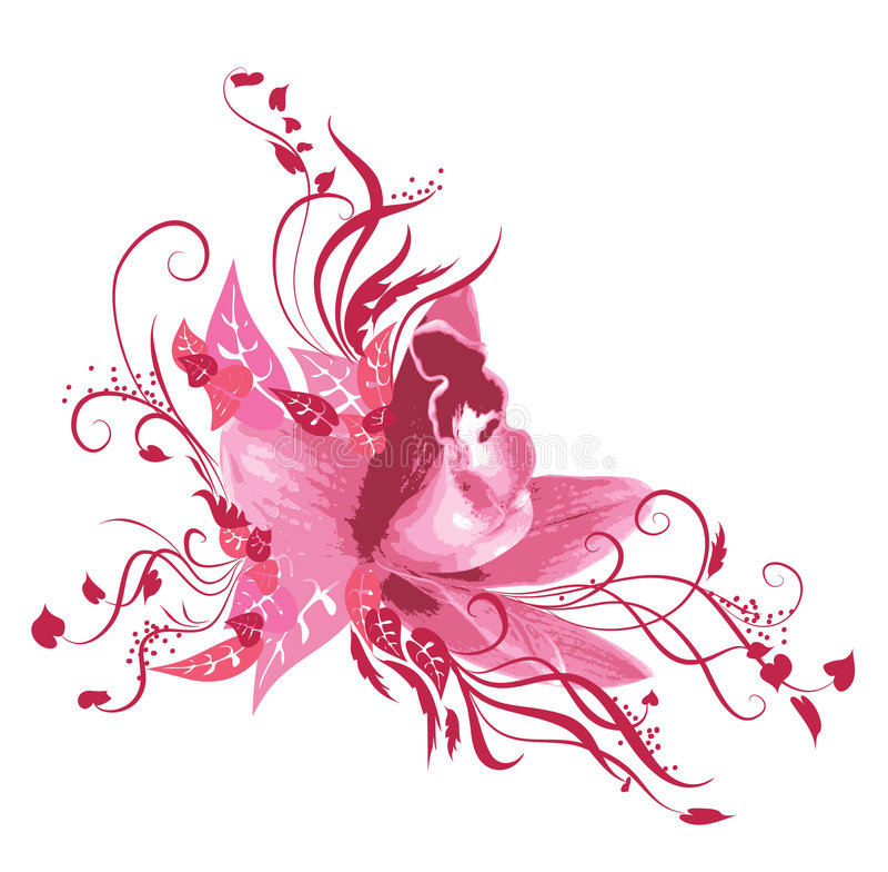 Orchid stock illustration