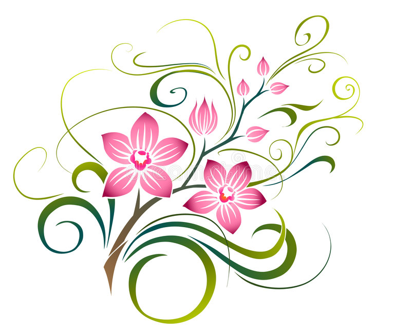 Orchid stock illustration