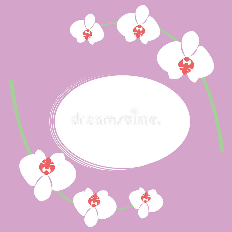 Orchid royalty free illustration