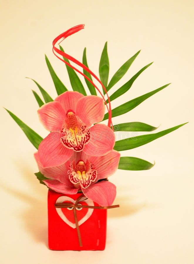 Orchid bouquet. Image of a beautiful orchid bouchet - Valentine Day's present royalty free stock photos