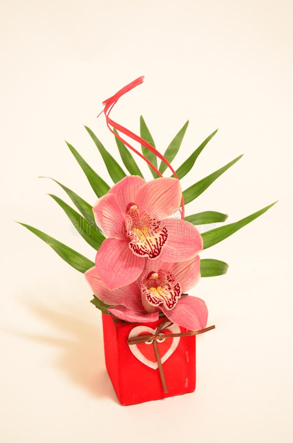 Orchid bouquet. Image of a beautiful orchid bouchet - Valentine Day's present royalty free stock photography