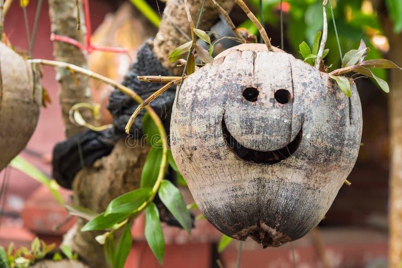 Orchid?es dans des pots Pots faits ? partir de la noix de coco Accrocher dans le jardin photos stock