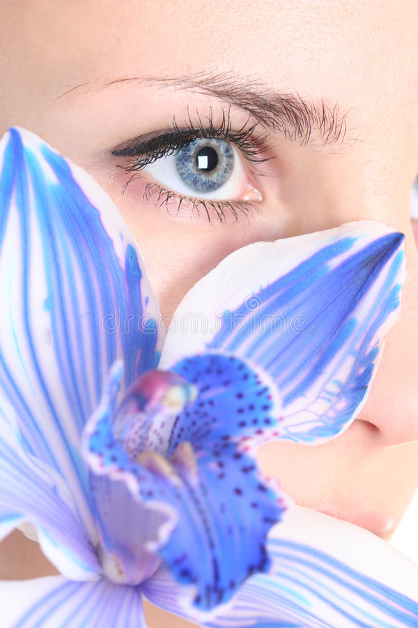 Orchid and eye royalty free stock photos